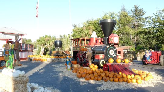 02-81 Mise en valeur de la locomotive ou des fruits